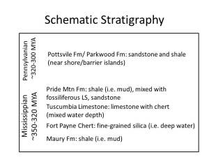 schematic stratigraphy